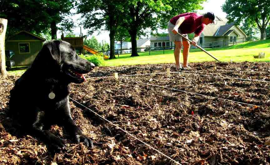 Forking the Soil [CCBY OakleyOriginals]
