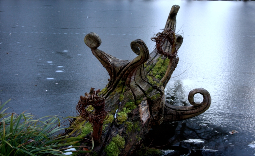 Root in Frozen Water February [CCBYSA David Hill]