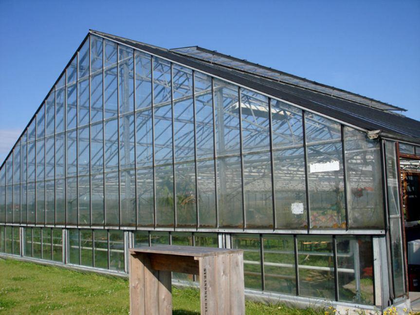 Big Greenhouse [CCBY Marcel van Schooten]