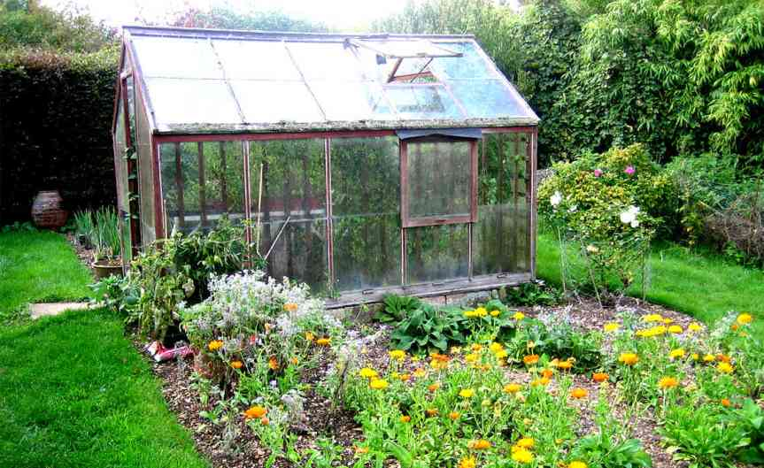 Greenhouse and Flowers [CCBYSA Rachel Coleman Finch]
