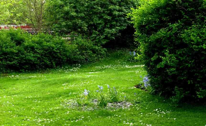 May Garden [CCBYSA John Dobsen]
