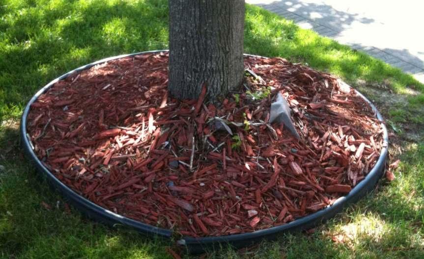 Mulch Tree [CCBY gardentrek]