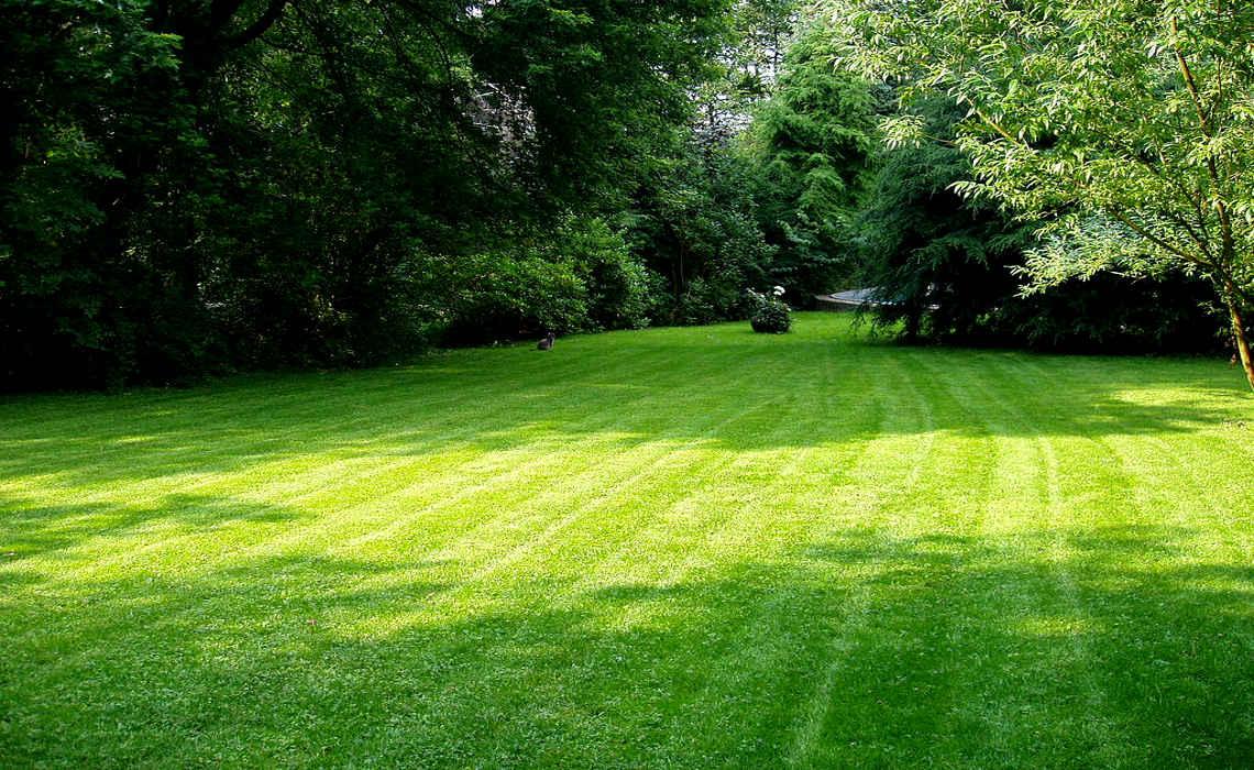 Mowed Lawn [CCBYSA Johannes Gilger]