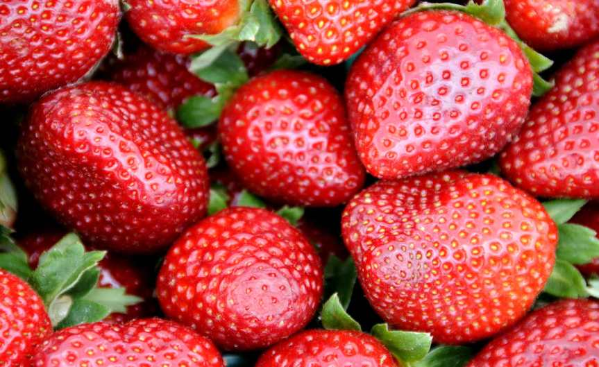 Strawberries [CCBY Fire Chicken TA99]