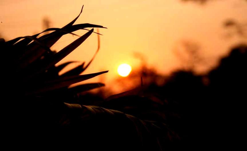 Sunrise [CCBYSA Tiganta Talukdar]