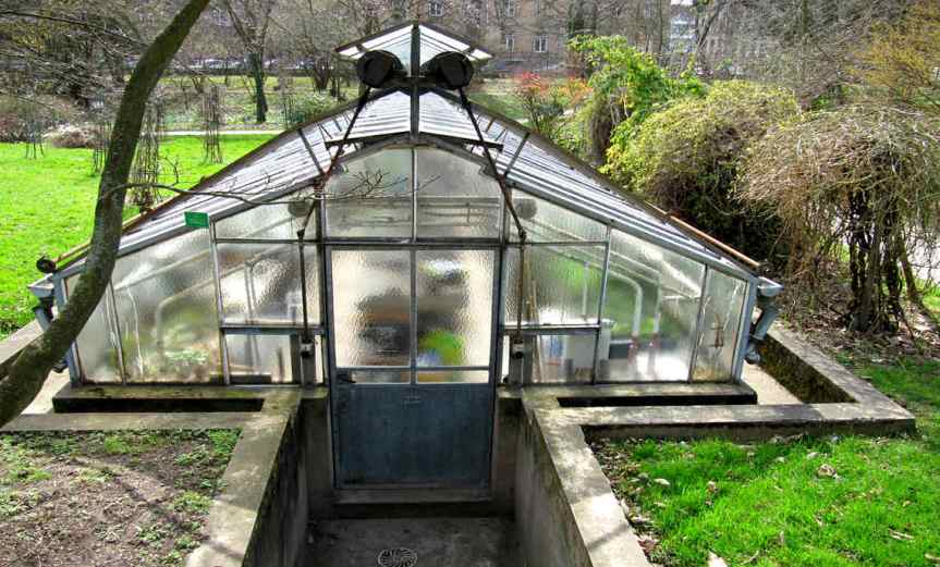 CellarGreenhouse [CCBY francois]