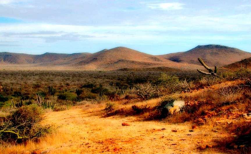 Dry Land [CCBY Ana Carrington]