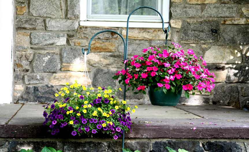 Hanging_Baskets_CCBY_JimThePhotographer