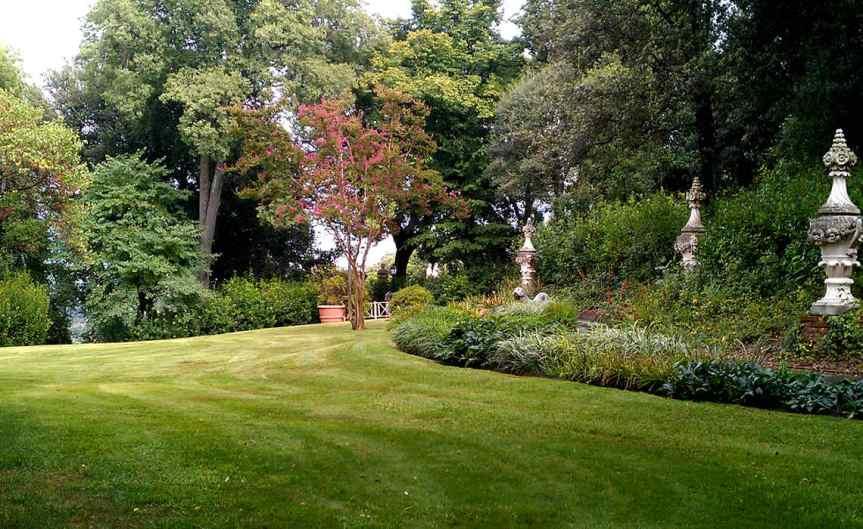 Lawn [CCBY tsmithucalgary]