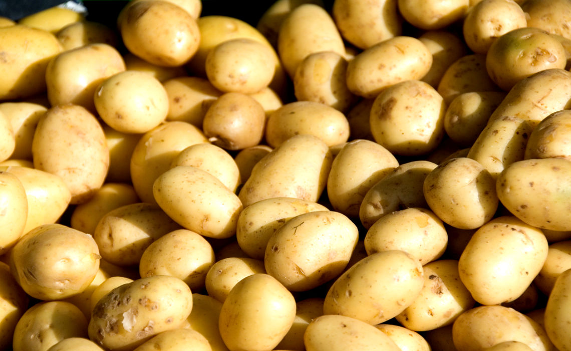 Many Potatoes [CCBY Paul and Jill]