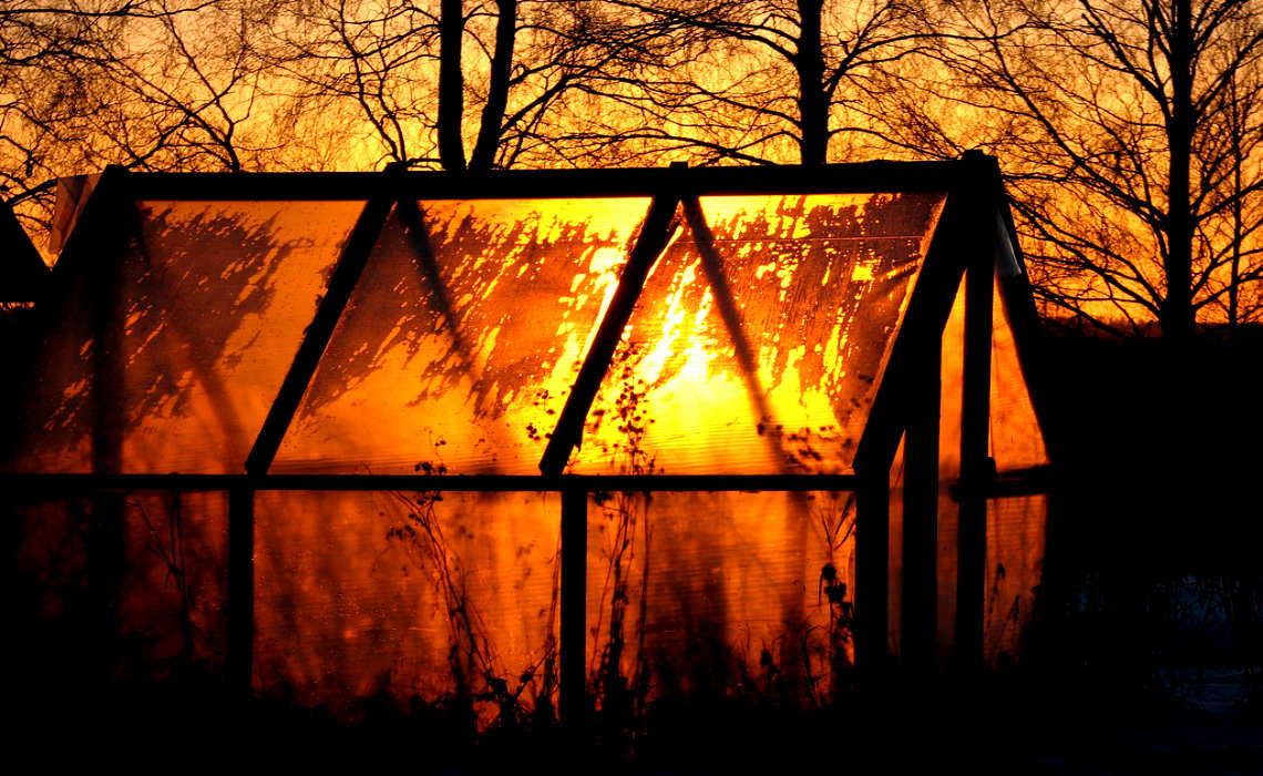 Orange Greenhouse [CCBY Antti T Nissinen]