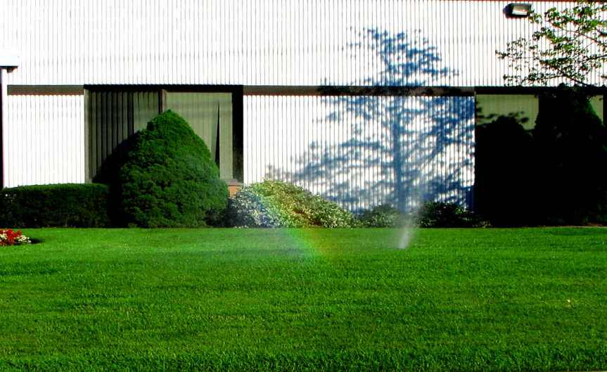 PerfectLawn [CCBY MSVG]