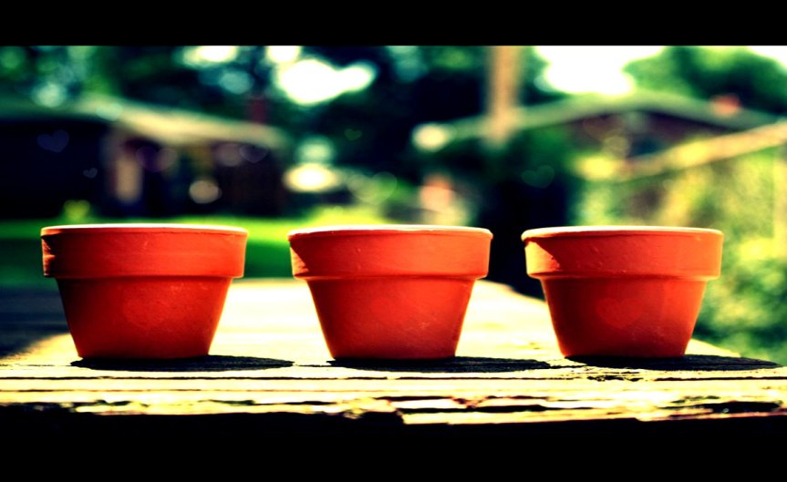 Pot [CCBY englishsnow]