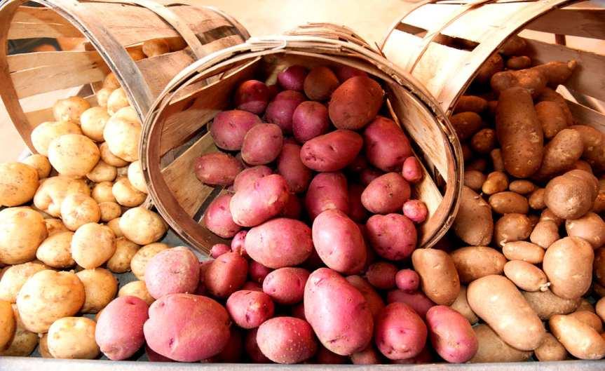 Potatoe Basket [CCBY UnitedSoybeanBoard]