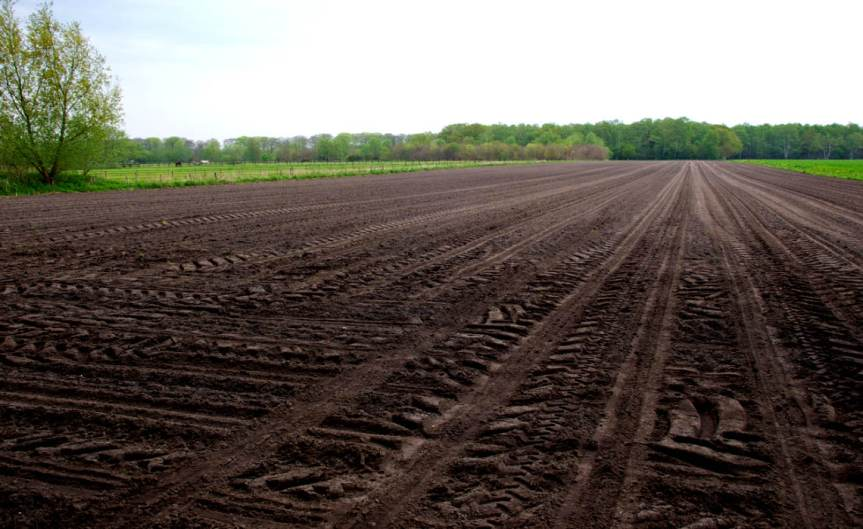 Soil [CCBY ednl]