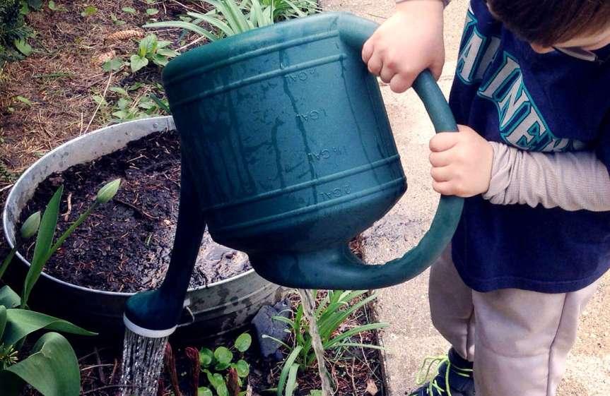 WateringCan [CCBY RyanDickey]