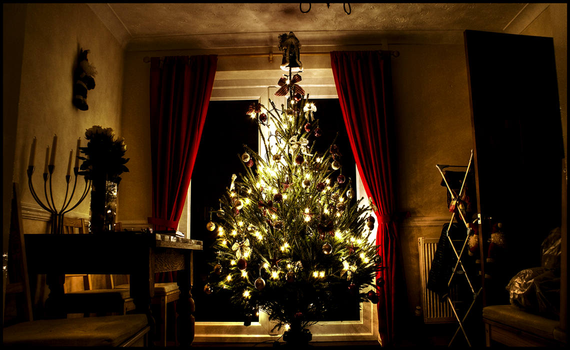 ChristmasTree [CCBY SteveWilson]