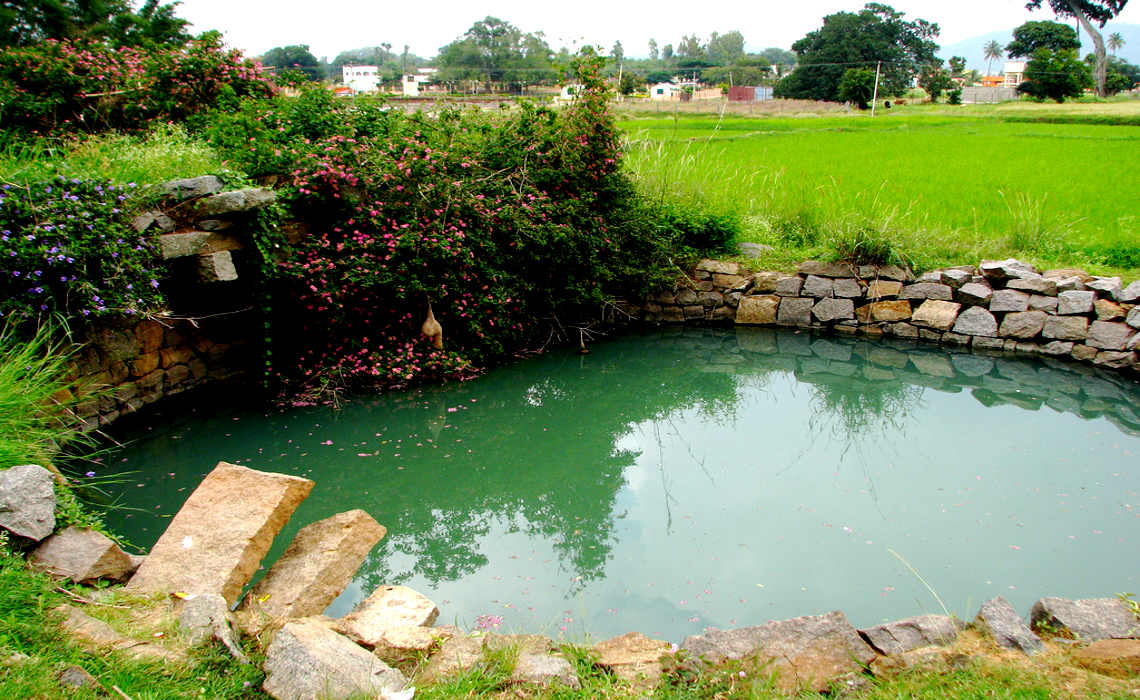 Keep ponds clear blog for How to clean a fish pond
