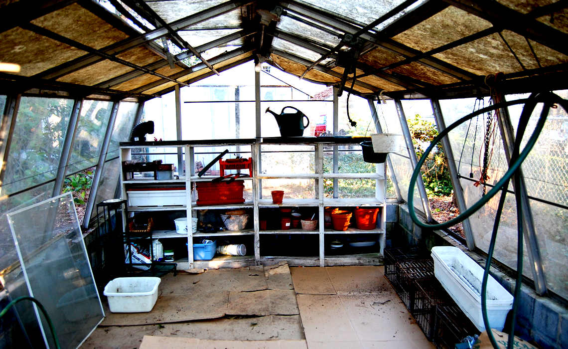 Insidegreenhouse [CCBY-SA Eunice]
