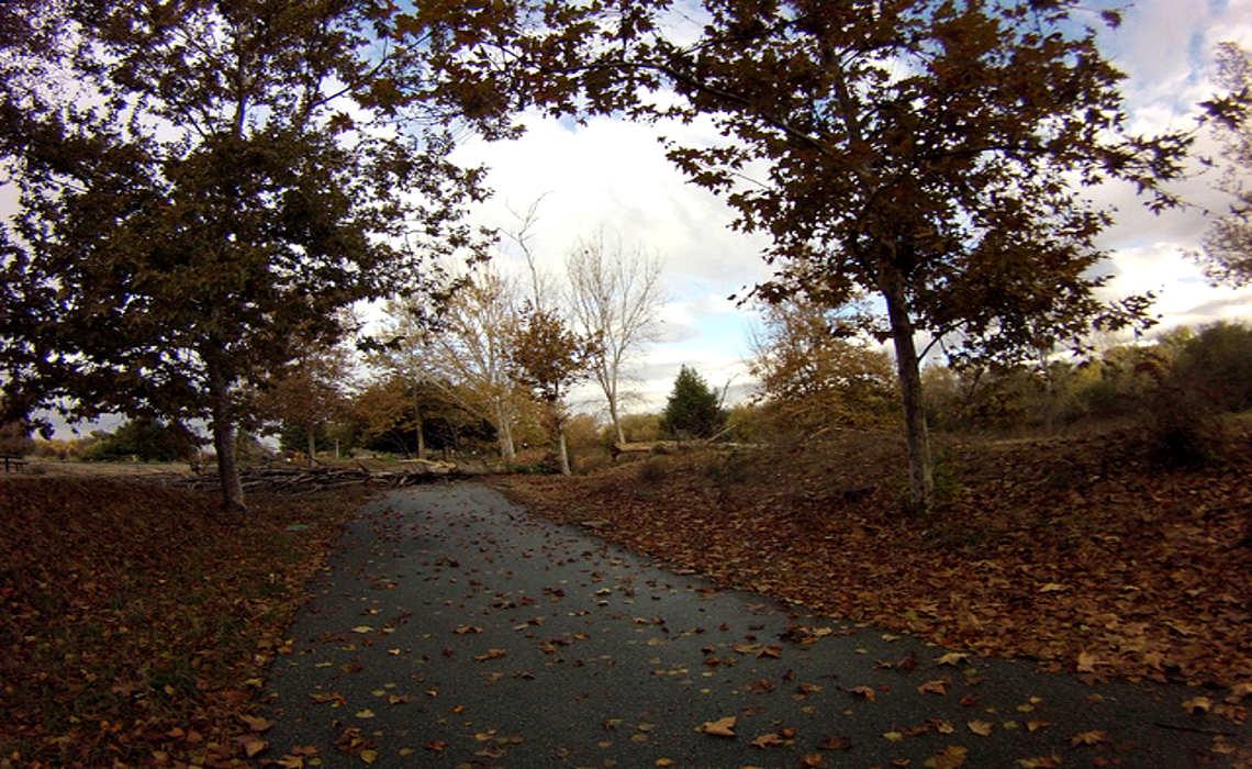 Pathway [CCY-SA RichardMasoner]