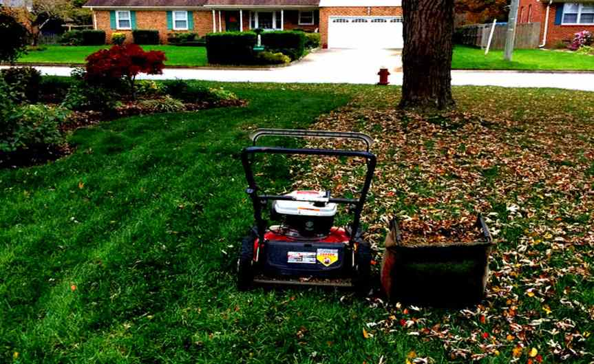 Lawnmower [CCBY BillSmith]