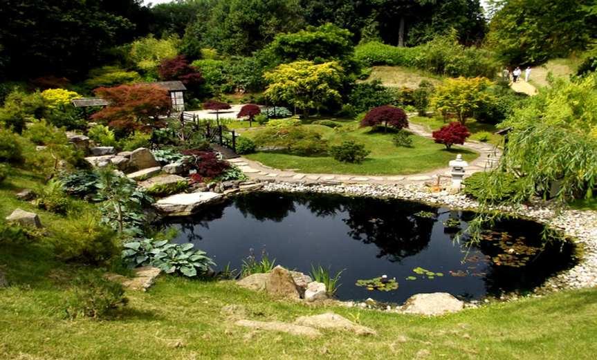 Pond [CCBY ElliotBrown]