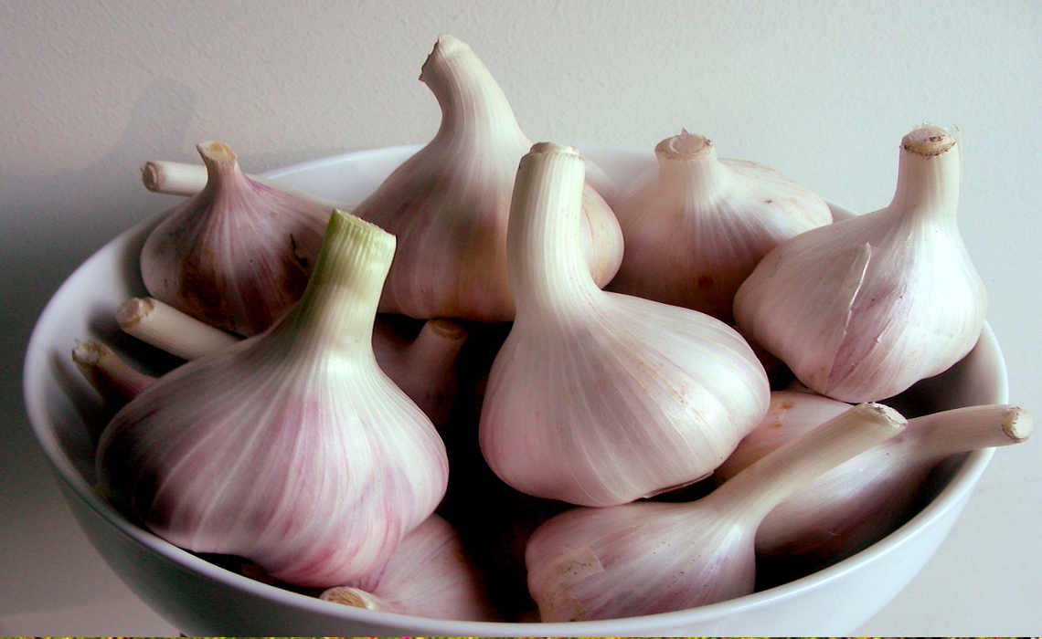 Garlic [CCBY IsabelEyre]