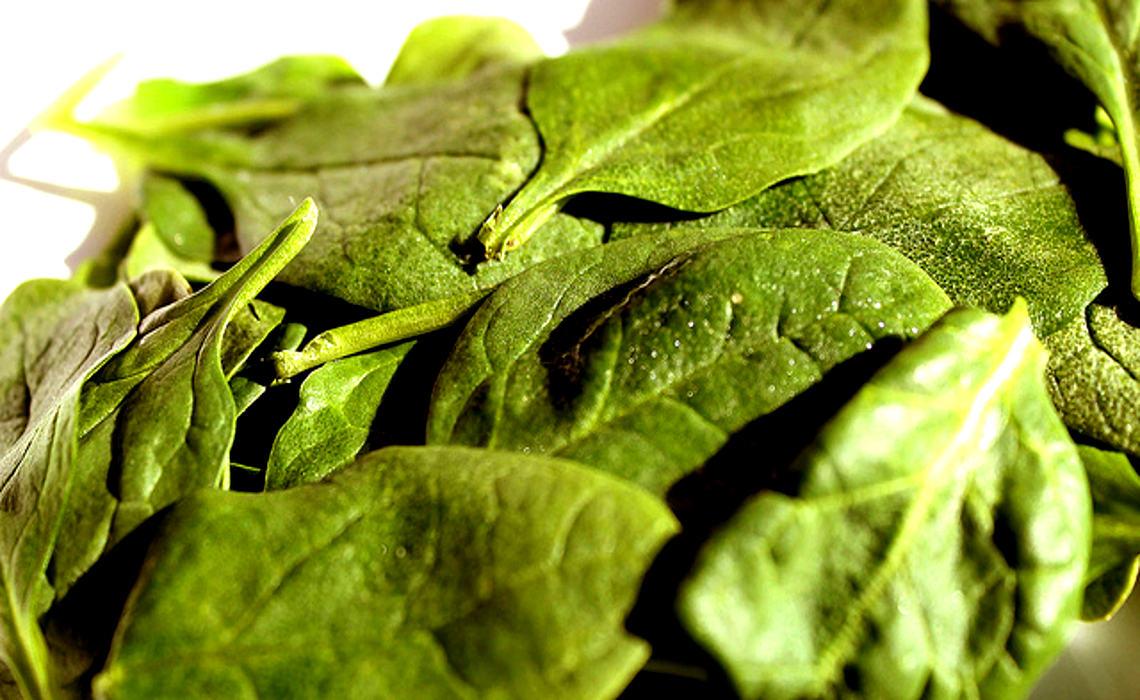 Spinach [CCBY DaniellaSegura]