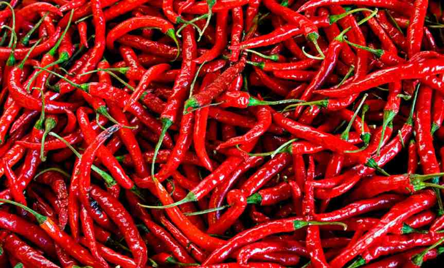 Peppers [CCBY LizWest]