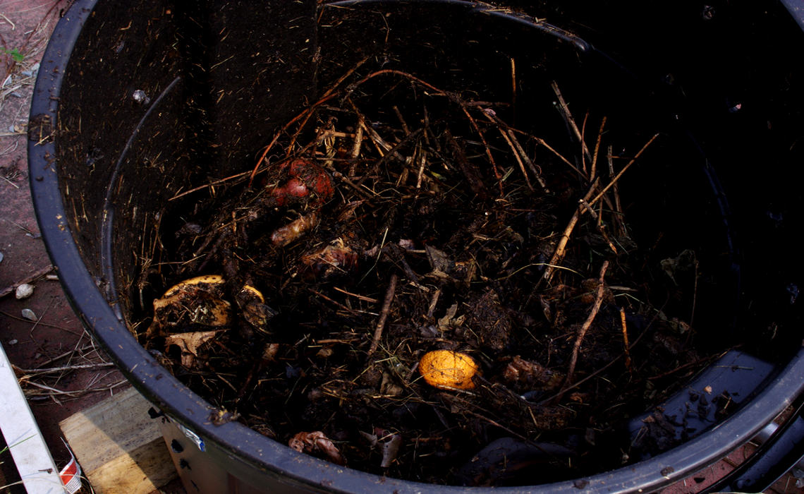 Compost [CCBY Mark]