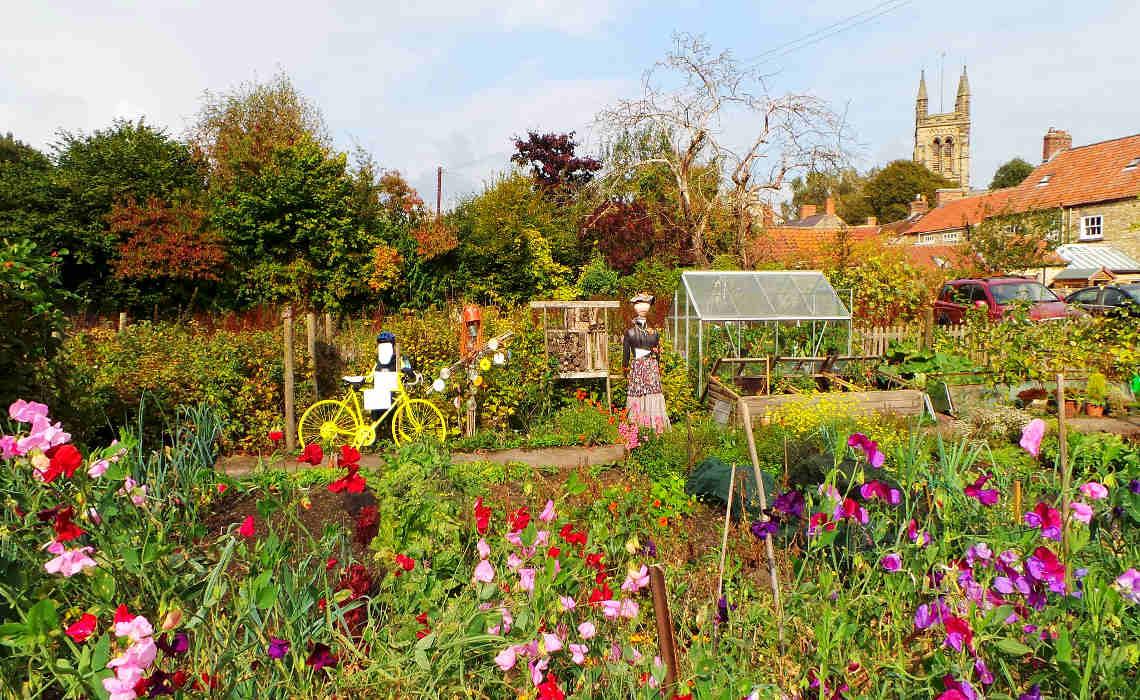 Garden [CCBY GarethWilliams]