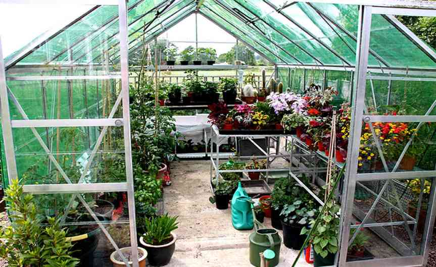 Greenhouse [CCBY MarilynPeddle]
