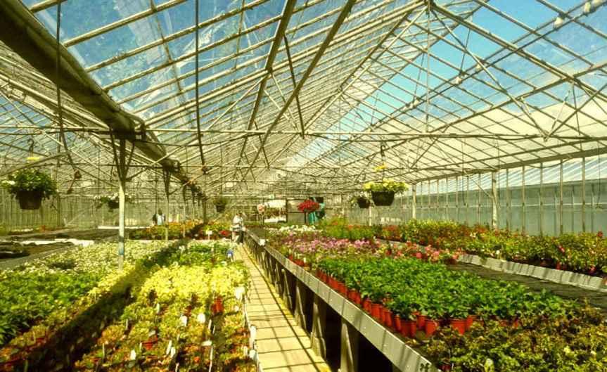 GreenhouseHeat [CCBY-SA HefinOwen]