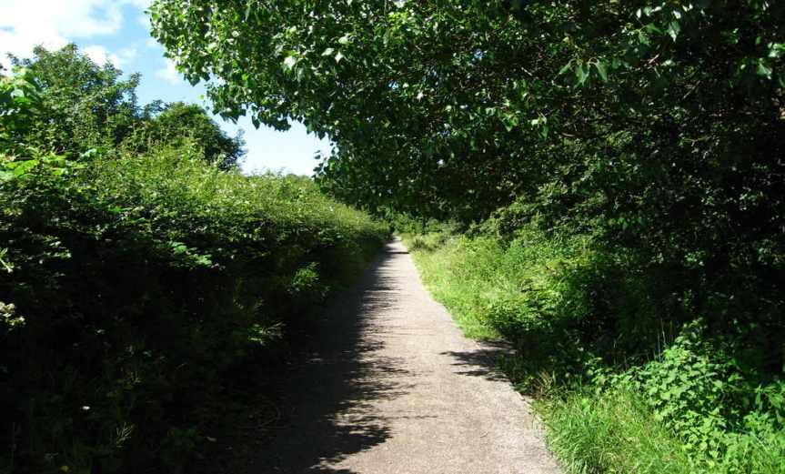 Path [CCBY RDVRS]