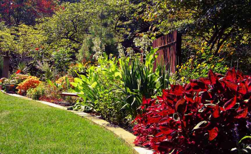 Perennials [CCBY-SA RonFrazier]