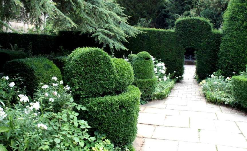Planting Hedges [CCBY Dave Catchpole]