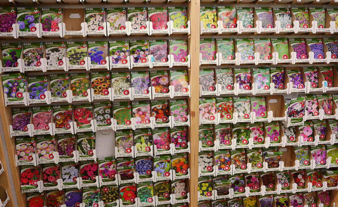 Seeds [CCBY-SA FranklinHeijnen]