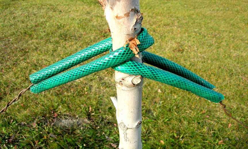 Ties [CCBY DanMcKay]