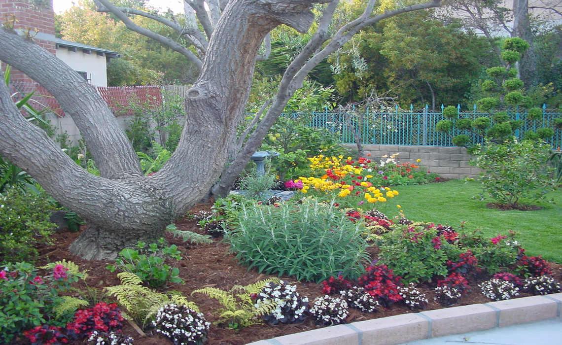 Backyard [CCBY-SA GHR2009]