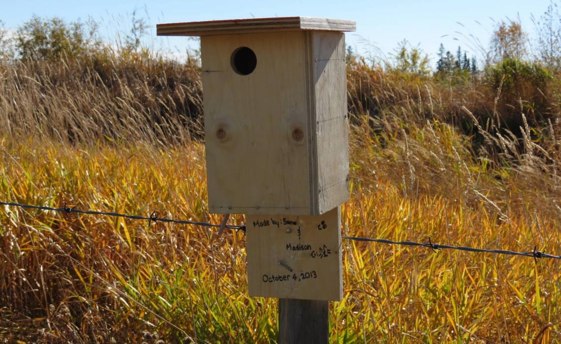 NestingBox [CCBY EdmondAndAreaLandLust]