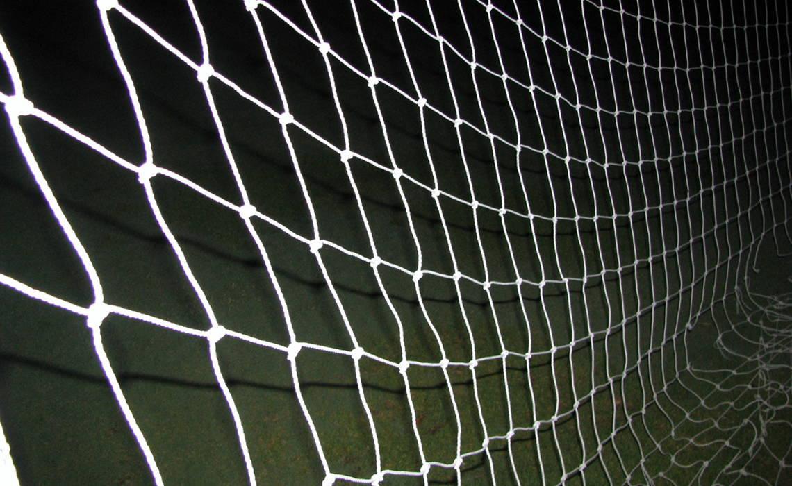 Nets [CCBY-SA DanielRBlume]