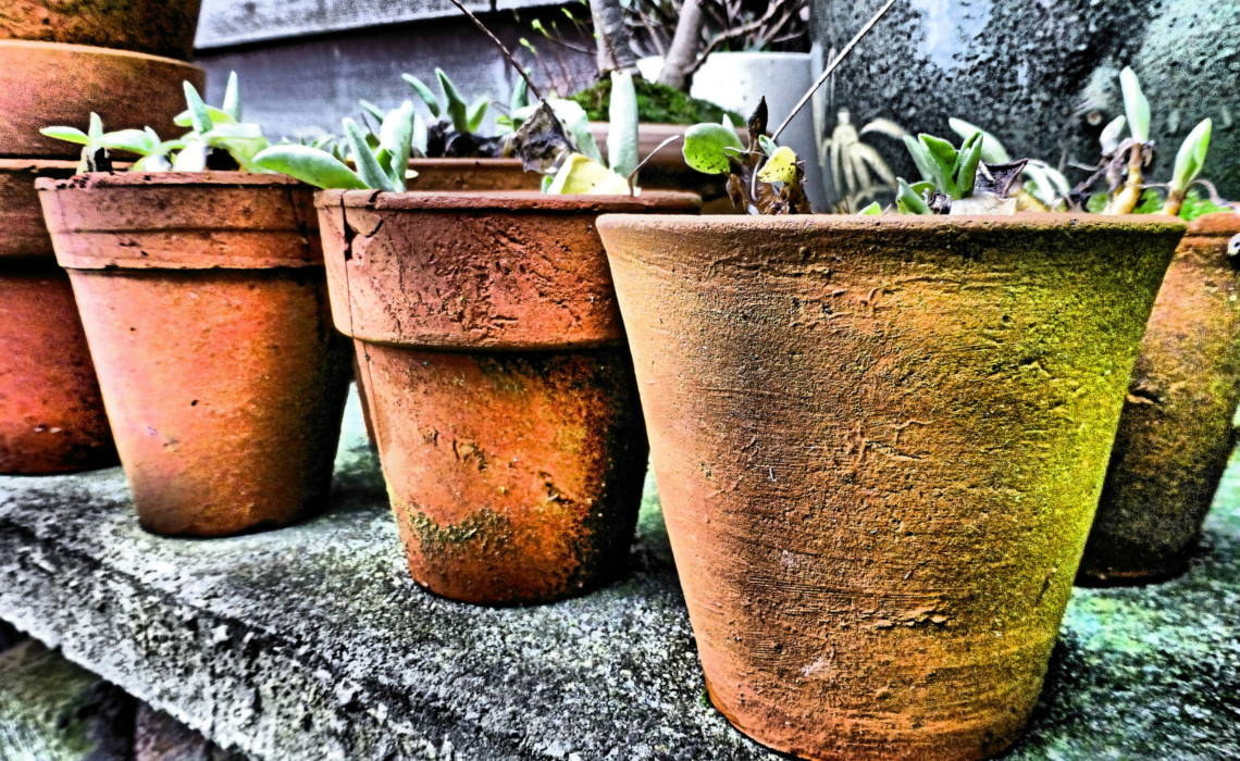 Pots [CCBY KateRussel]