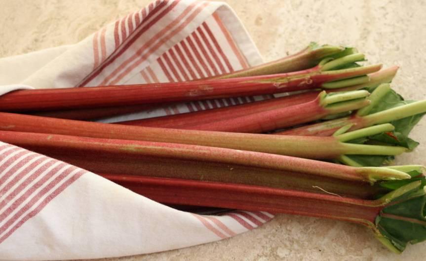 Rhubarb [CCBY Whitney]