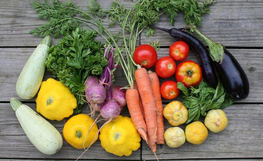 Vegetables [ ChristopherParquette]