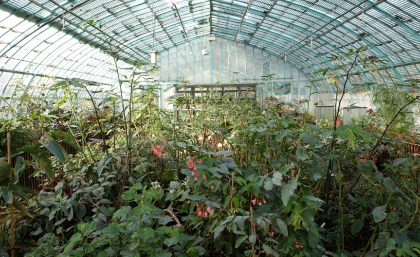Greenhouse [CCBY GuilhelmVellut]