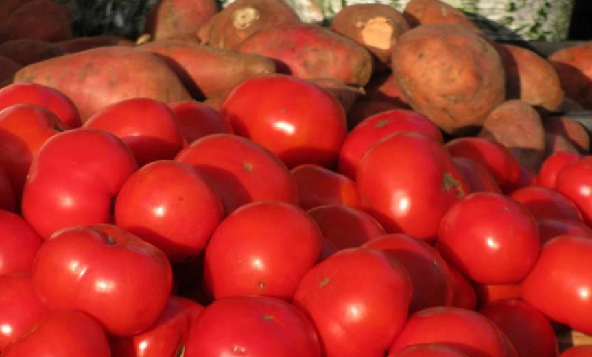 TomatoPotato [CCBY EdenJanineJim]